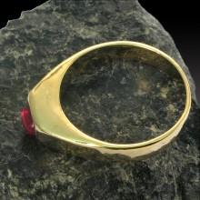 Ring 029